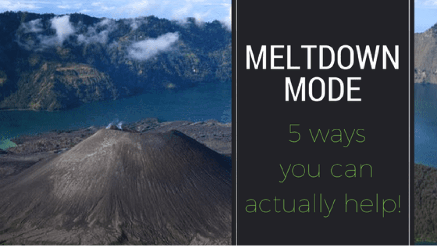 Meltdown Mode: 5 Ways You Can Actually Help